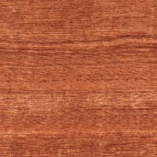 Sapele timber species
